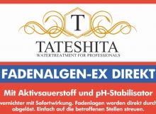 tateshita-fadenalgen-ex