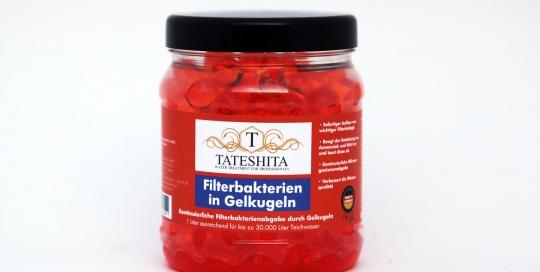 Tateshita Filterbakterien